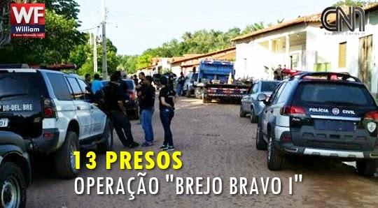 BREJO BRAVO 13 PRESOS