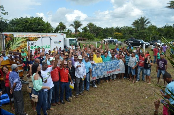 abacaxi-turiaçu2