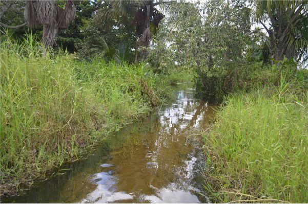 rio-magu-10