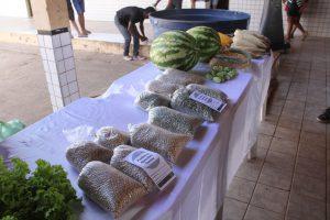 A comercialização de hortaliças e grãos foram reforçadas no município de Marajá do Sena. Foto: Divulgação